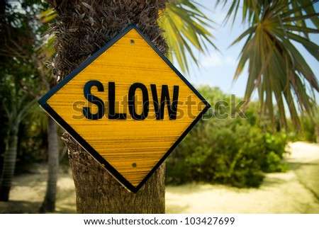 Yellow slow sign on the palm tree - stock photo