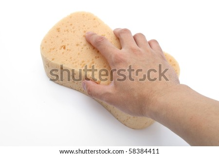 Yellow Sponge with white background