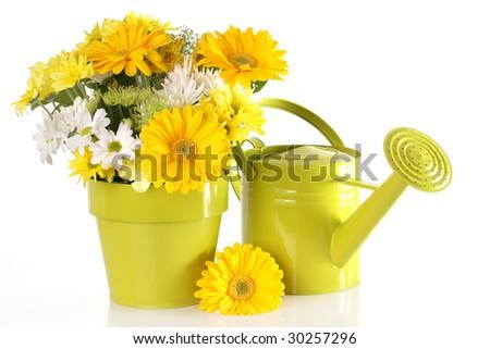 Yellow spring flower arrangement. - stock photo