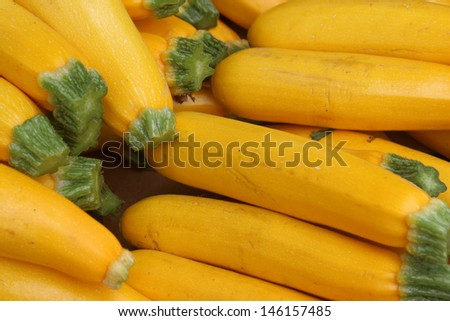 Yellow Squash at the Santa Barbara Farmer's Market - stock photo