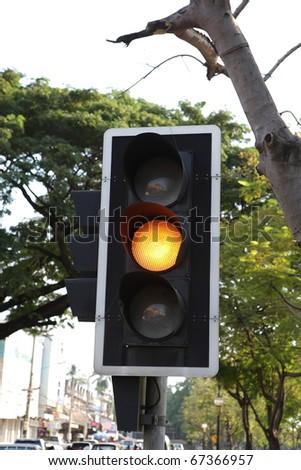 yellow stoplight transort with green tree - stock photo