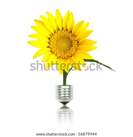 yellow sun flower with bulb, eco energy concept - stock photo
