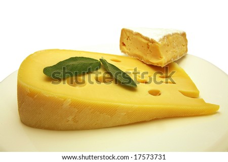 yellow swiss cheese and camembert on dish - stock photo