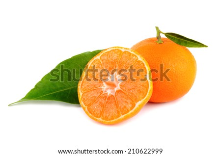 Yellow tangerines on a white background