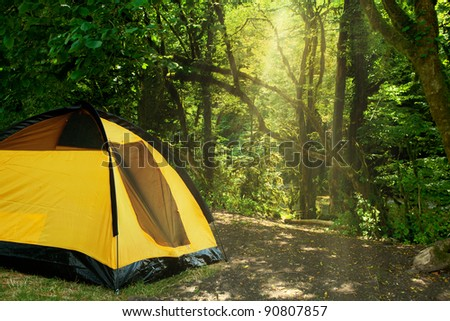 yellow tent in the woods - stock photo