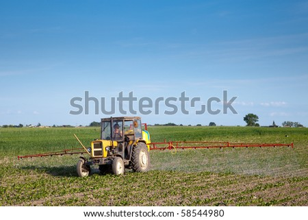 Yellow tractor fertilizing beetroot field in summer day - stock photo