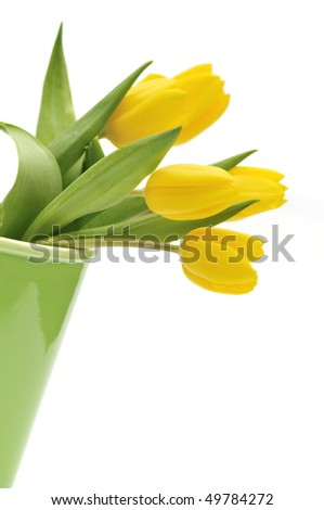 Yellow tulip flower in green vase