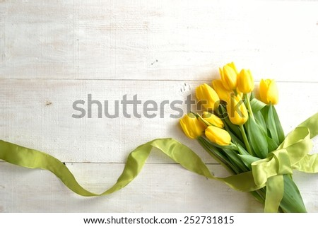 Yellow tulips bouquet with yellow green ribbon.Image of spring season - stock photo