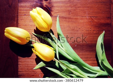 Yellow Tulips on a Table