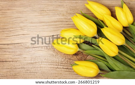 Yellow tulips on a wooden background - stock photo