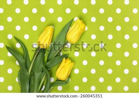 Yellow tulips on green textile background - stock photo
