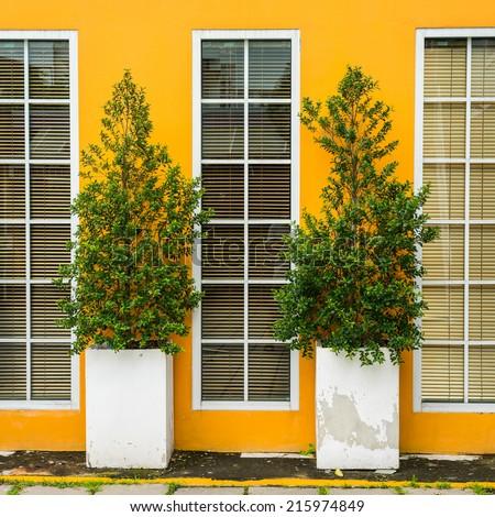 Yellow wall with glass long window. - stock photo