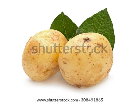 Yellow young potato isolated on white background - stock photo