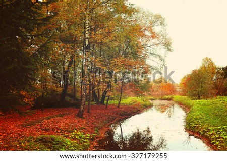 Yellowed oak trees near the small forest river in foggy weather - autumn picturesque landscape, creative filter processing - stock photo