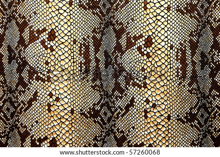 Yellowish-brown silk with a pattern snake skin - stock photo