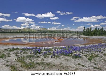 Yellowstone geothermal pond - stock photo