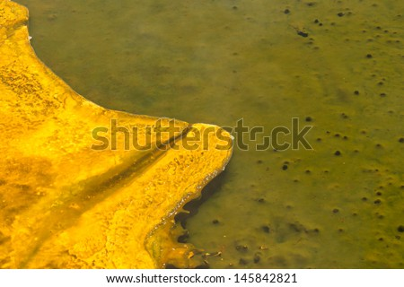yellowstone hot springs natural background texture with superb colors - stock photo