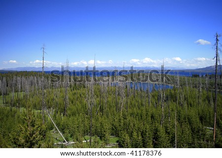 Yellowstone Lake and wilderness in Yellowstone National Park - stock photo