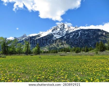 Yellowstone Mountains - Grand Tetons - stock photo