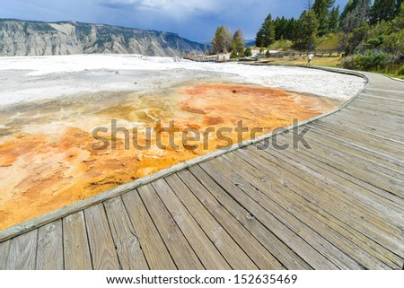 Yellowstone National Park - Travertine patterns at Mammoth Hot Springs, , Wyoming, USA  - stock photo