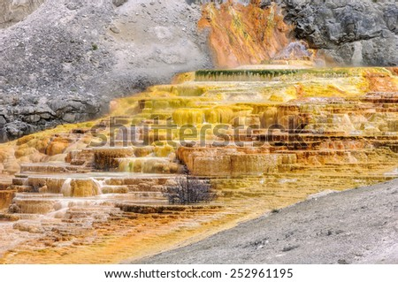 Yellowstone, Travertine Terrace, Mammoth Hot Springs - stock photo