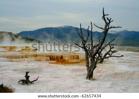 Yellowstone, world heritage - stock photo