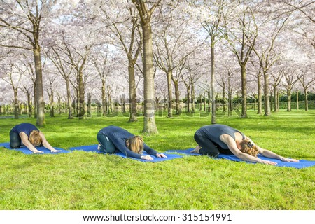 Yoga group stretching on green grass in a spring park - stock photo