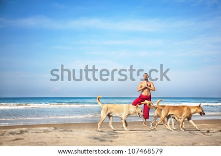 Yoga tree pose by man in red trousers and dogs going in front of him on the beach at ocean background - stock photo