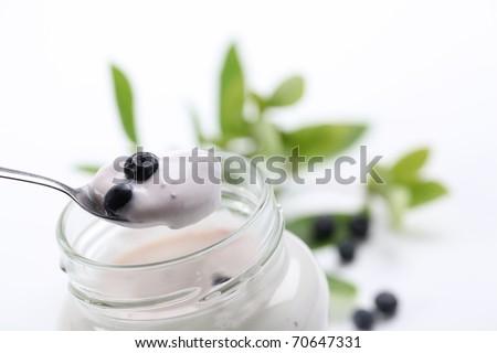 Yogurt and fresh wild blueberries. Shallow DOF - stock photo
