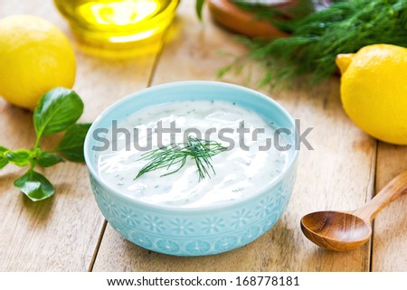 Yogurt and Sour cream with dill dressing - stock photo