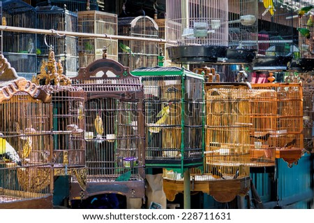 Yogyakarta Bird Market - stock photo