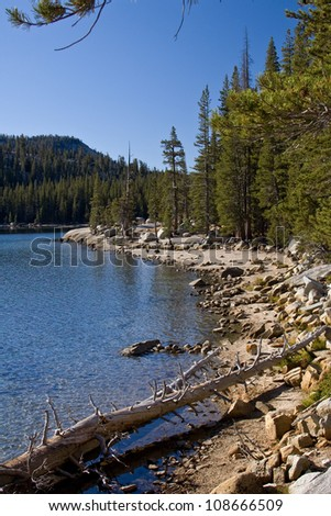 Yomesite National Park - stock photo