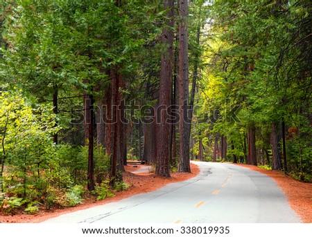 Yosemite Valley road.  Yosemite National Park, California USA - stock photo