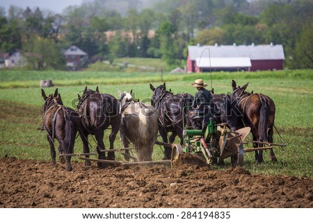 Young amish boy operating a horse drawn plow in the fields of rural Lancaster County Pennsylvania. - stock photo