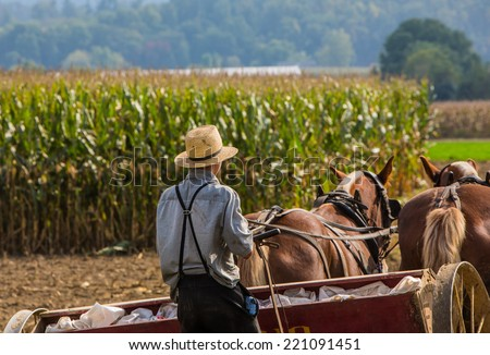 Young amish farmer behind horses sowing a field during the fall season. - stock photo