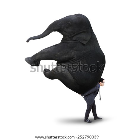 Young asian manager carrying a big elephant in the studio, isolated on white background - stock photo