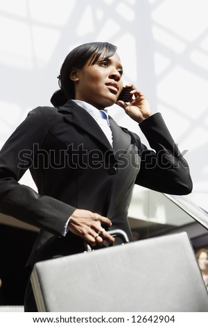 Young attractive businesswoman talking on her cellphone, holding a briefcase. Vertically framed shot - stock photo
