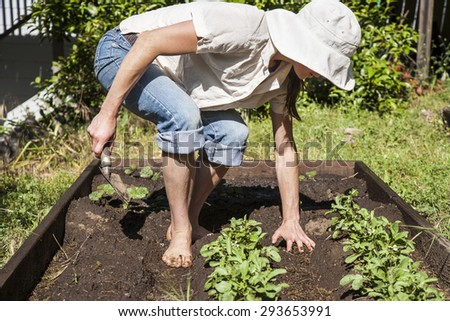 Young, attractive, lean woman working in her backyard garden. - stock photo
