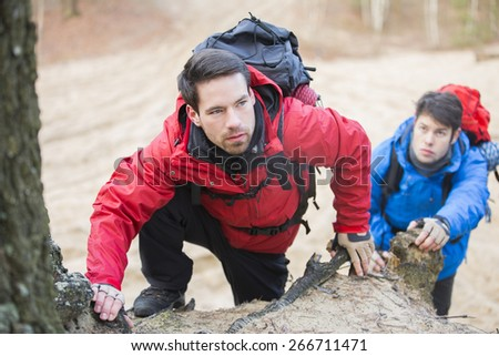 Young backpackers hiking in forest - stock photo