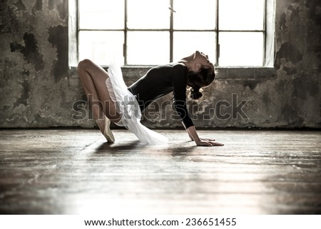 Young ballet dancer - Harmonious pretty woman with tutu posing in studio - Contemporary dance performer - stock photo