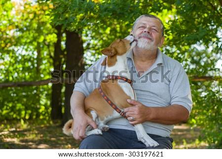 Young basenji licks the master executing its everyday chars - stock photo