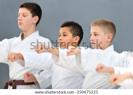 young, beautiful, successful multi ethical karate kids in karate position - stock photo