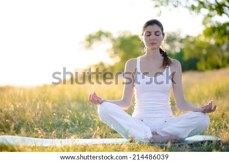 Young Beautiful Woman Practices Yoga on the Sunny Meadow. Active Lifestyle - stock photo