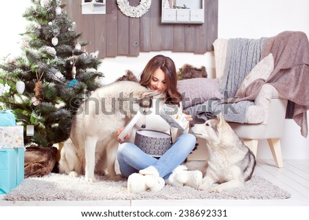 young beautiful woman wearing white sweater near a Christmas tree with dogs.Husky