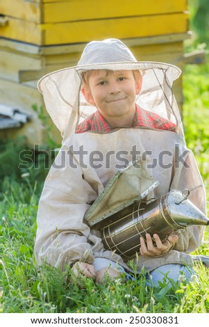 Young beekeeper boy with painted wooden beehives - stock photo