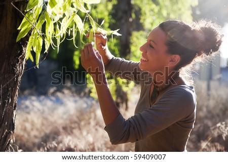 Young biologist examin eucalyptus leaf. - stock photo