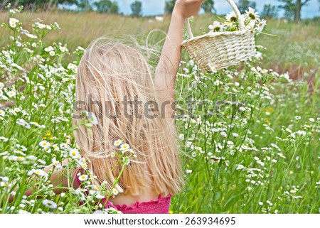 young blond girl with basket of wild daisies in daisy field - stock photo