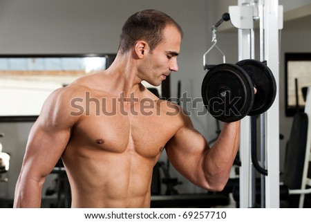 young bodybuilder training in the gym - dumbbell alternate biceps curl
