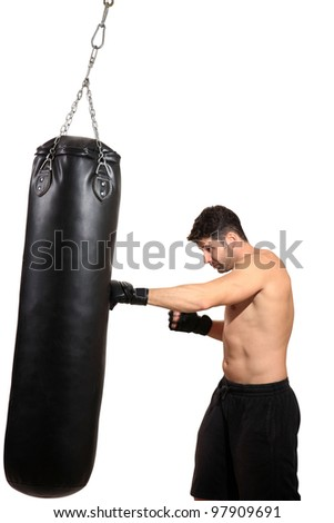 young boxer exercising isolated on a white background - stock photo