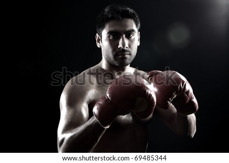 young boxer on black background geniune lens flare - stock photo